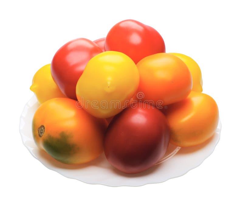 Tomatto multicolore, isolato fotografia stock