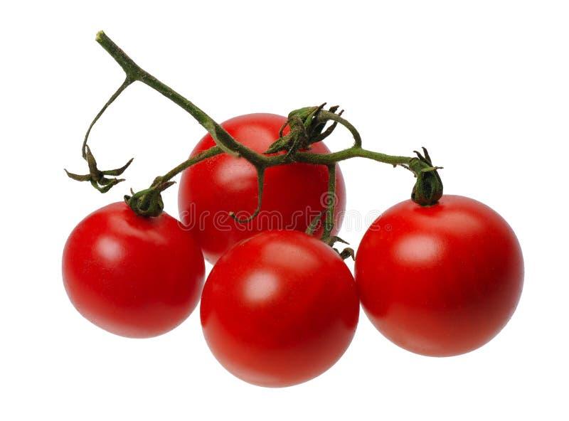 Tomatto rosso, isolato immagine stock libera da diritti