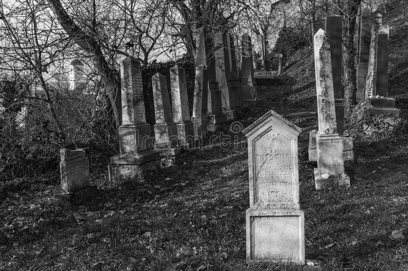 Tomb stones at jewish cemetery below medieval castle Beckov stock image