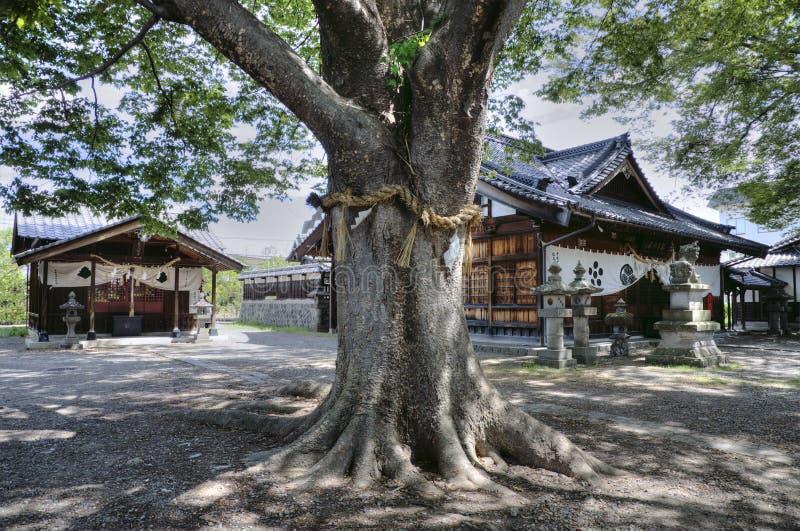 Tombeau shinto de Matsumoto, Japon images libres de droits