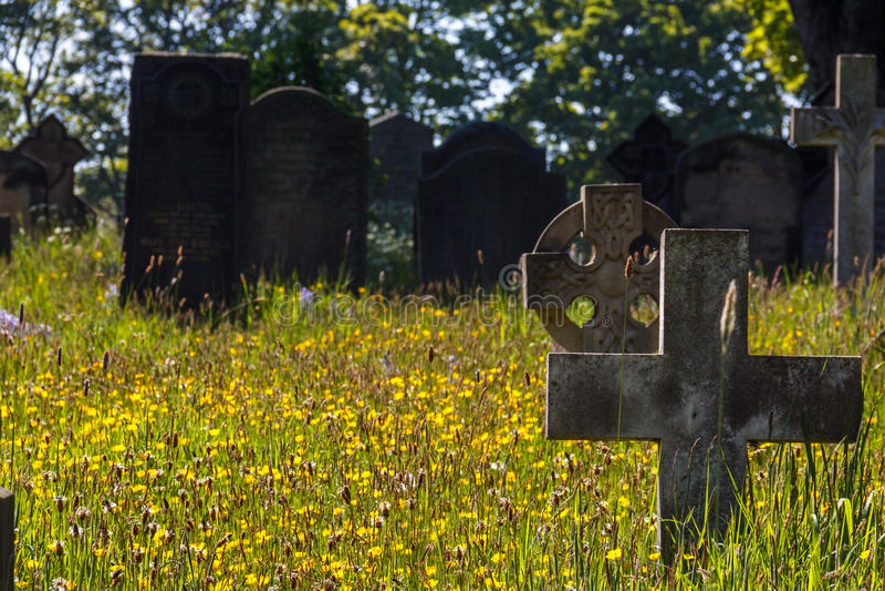 Tombes et Wildflowers photographie stock