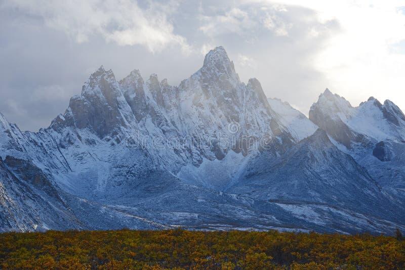 Tombstone yukon. Jagged mountains in tombstone territorial park in yukon, canada stock image