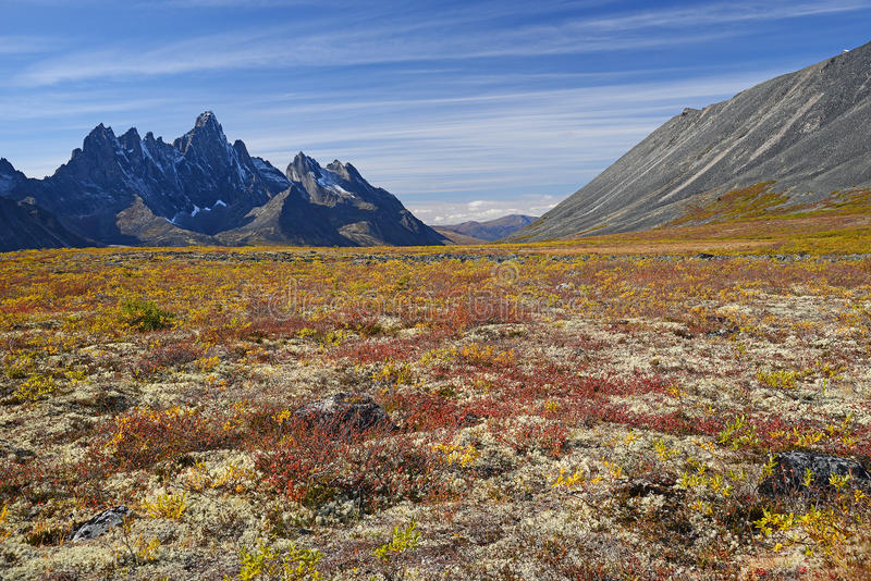 Tombstone yukon. Jagged mountains in tombstone territorial park in yukon, canada royalty free stock photo
