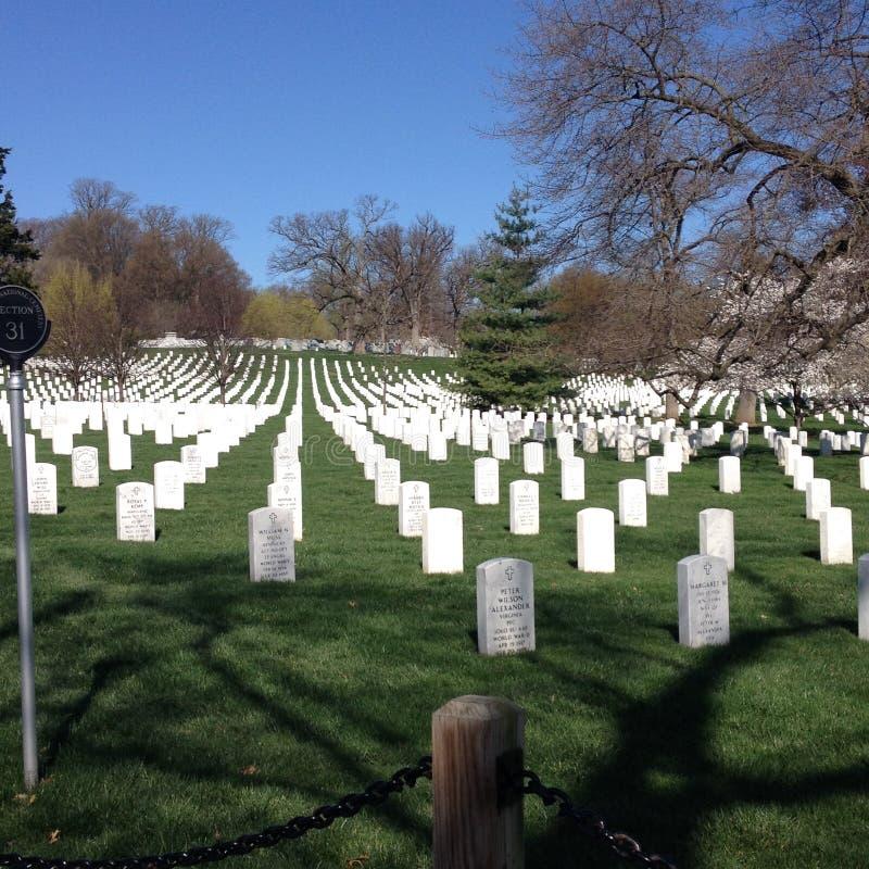 Tombstones of Arlington Cemetary royalty free stock photography