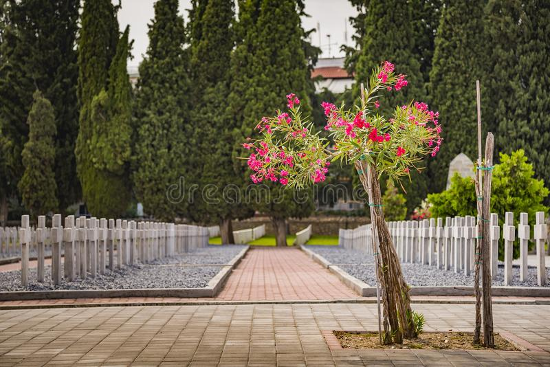 Tombstones in military cemetery in Thessaloniki, Greece royalty free stock photos