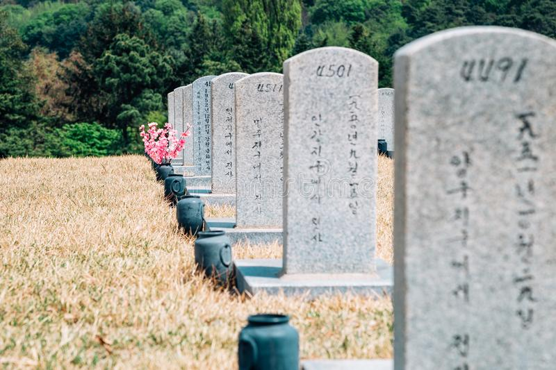 Tombstones at spring in Seoul National Cemetery, Korea royalty free stock images