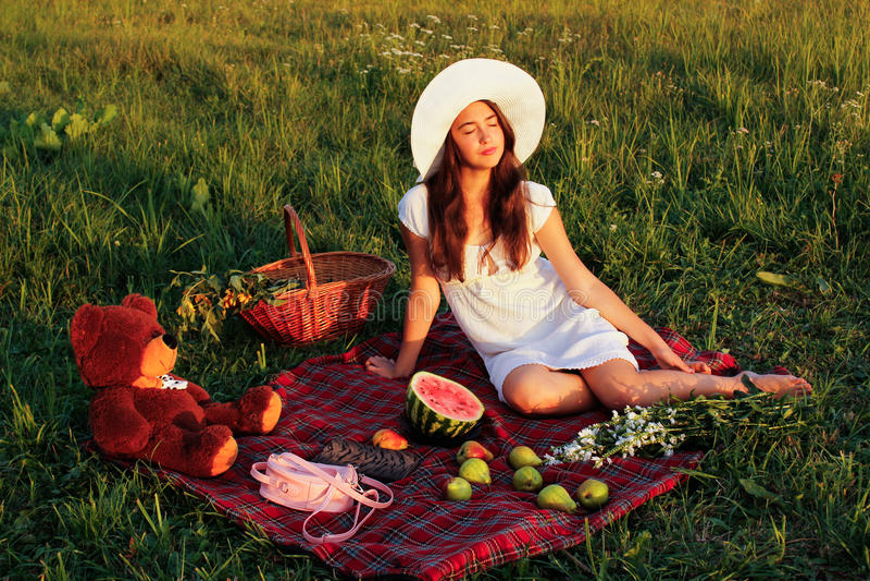 Tome parte num piquenique em um prado verde no verão imagens de stock royalty free