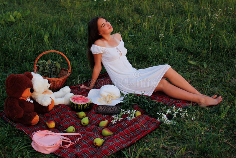 Tome parte num piquenique em um prado verde no verão fotos de stock
