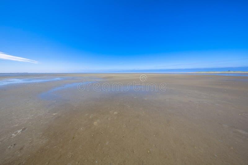 Tomhet av gyttjiga landremsorna för Wadden hav royaltyfri bild