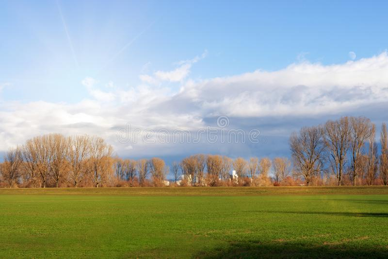 Tomma fält i vinter i bygd natur i Frankenthal - Tyskland arkivbild