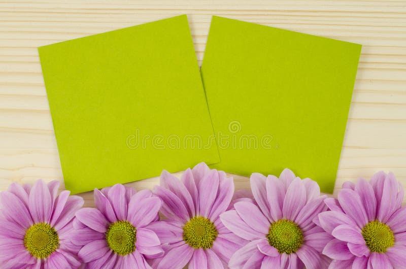 Tomma gröna kort och rosa färgblommor på träbakgrund royaltyfri fotografi