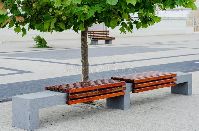 Tomma sittande träbänkar på promenaden parkerar in royaltyfria bilder