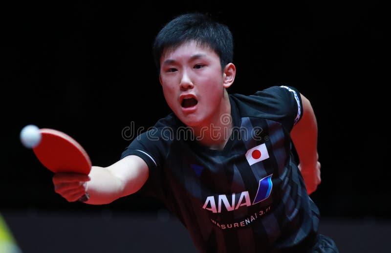 Tomokazu HARIMOTO backhand zdjęcie royalty free