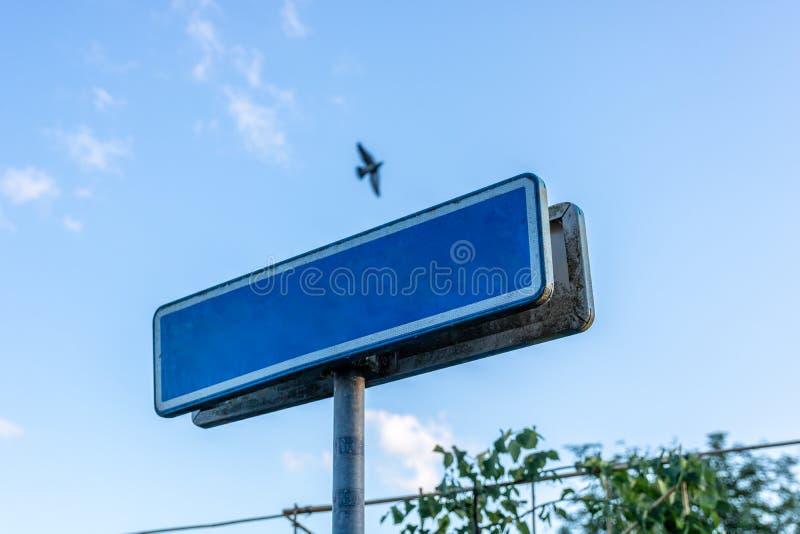 Tomt blått mellanlägg för gatatecken med en fågel i himlen arkivbilder
