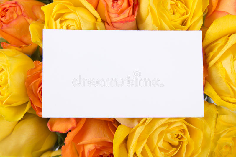 Tomt gåvakort och härlig bukett av rosor fotografering för bildbyråer