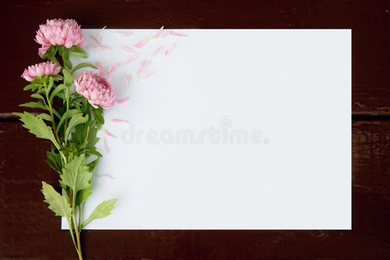 Tomt kort med blommaaster arkivbilder