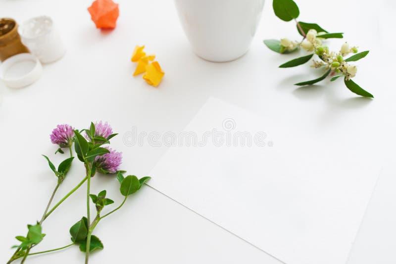 Tomt kort med nya blommor och gouachemodellen fotografering för bildbyråer