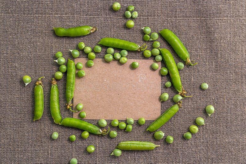Tomt papper och gröna ärtor royaltyfri bild