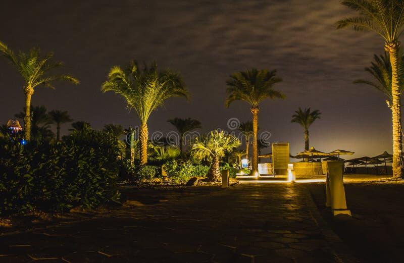 Tomt Sofitel hotell vid natt, Taba, Egypten royaltyfri fotografi