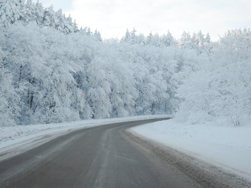 Tomt spår i skogen i fjällängarna i härlig snöig vinter arkivfoton