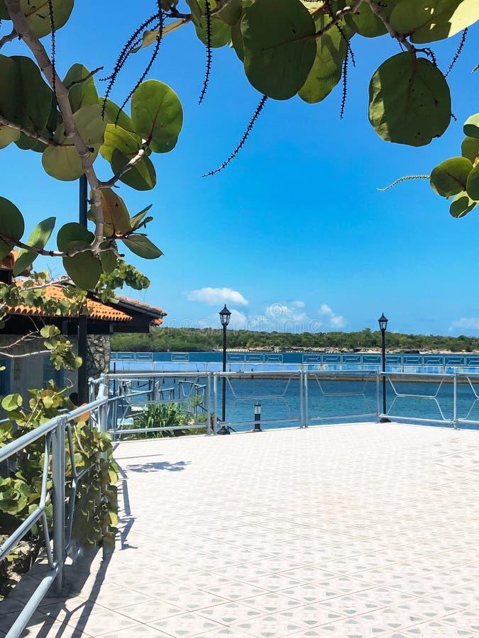 Tomt turist- område på den karibiska kusten av Kuban arkivbild
