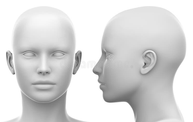 Tomt vitt kvinnligt huvud - sida och främre sikt royaltyfri illustrationer