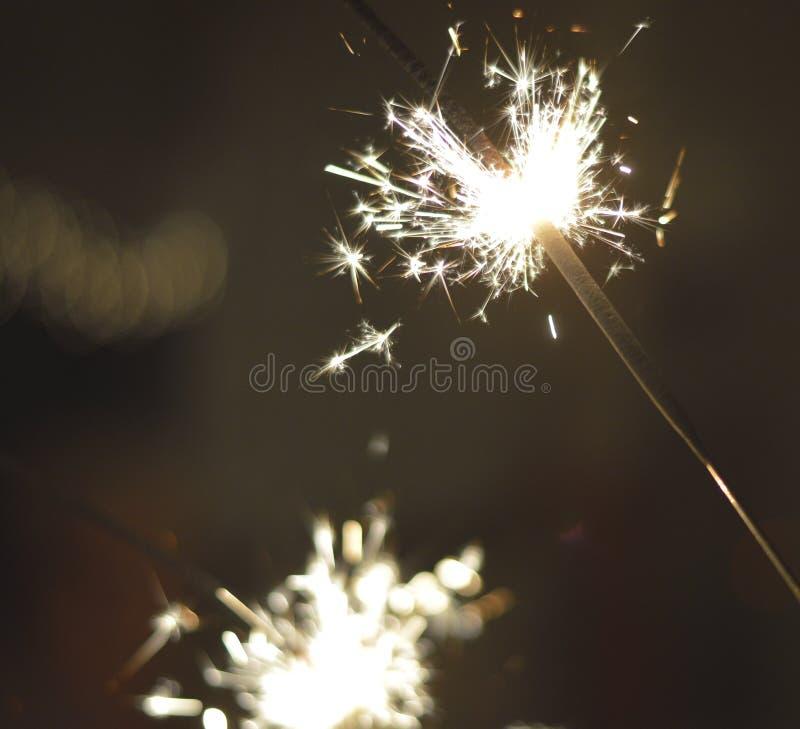 Download Tomtebloss arkivfoto. Bild av juli, bröllop, överför - 37345890