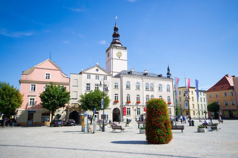 Tomten Dzierzoniow - Lower Silesia, Polen arkivbilder