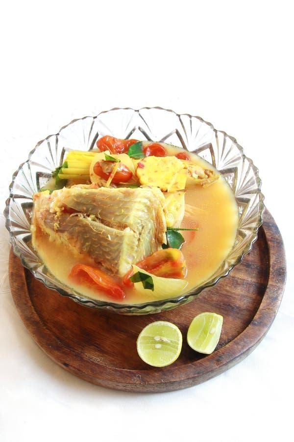 Tomyam dos peixes, alimento tailandês foto de stock royalty free