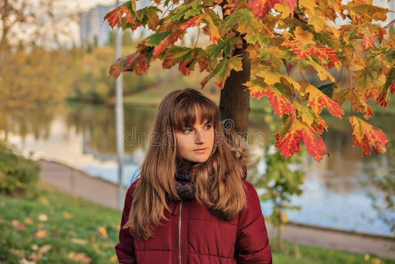 Tonårig flicka som står nära härlig lönn Närbildstående av den unga redheaded flickan i höstskog arkivbilder