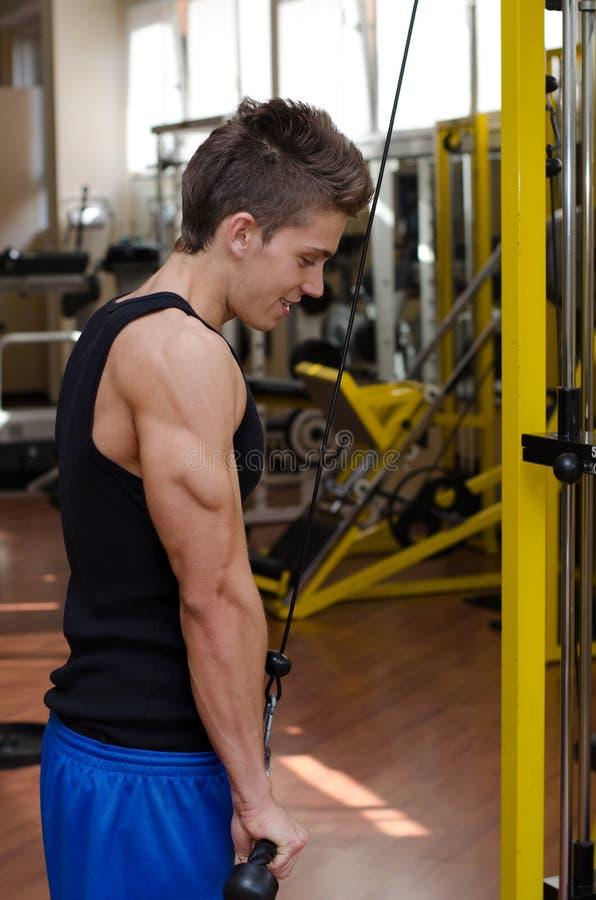Tonårig kroppsbyggare som övar triceps med idrottshallutrustning royaltyfri bild