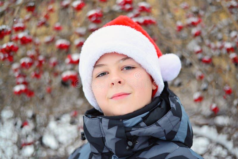 Tonårigt i locket Santa Claus på bakgrund av viburnumen royaltyfri foto