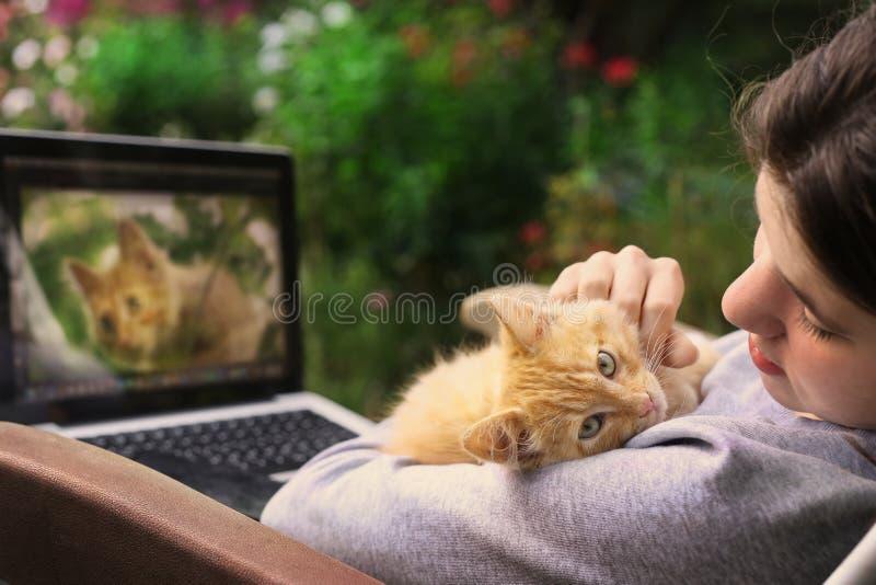 Tonåringflickan som arbetar på, retuscherar fotoet på bärbara datorn med den röda kattungen arkivfoto