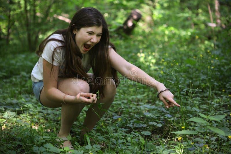 Tonåringflickaropet ser ormen i gräset royaltyfria bilder