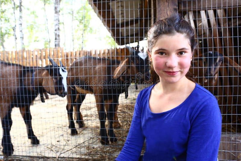 Tonåringflickaslut upp fotoet på zoopuddock med getter royaltyfri foto