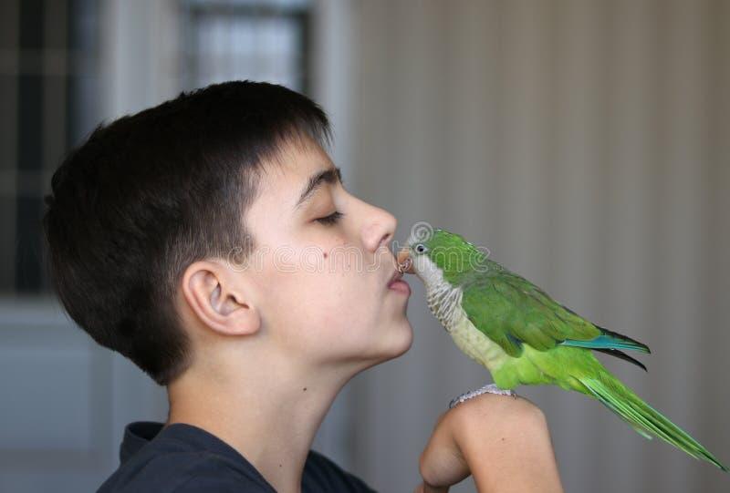 Tonåringpojken spelar med hans gröna quakerpapegoja royaltyfria foton