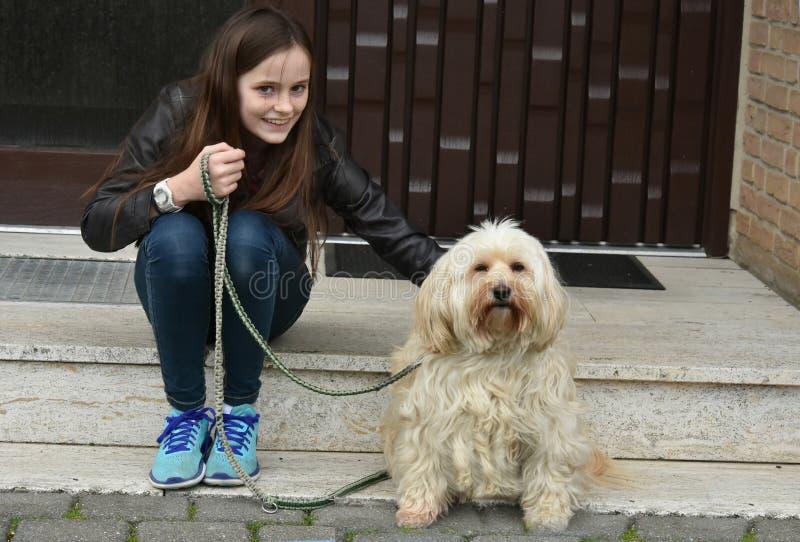 Tonårs- flicka och hennes söta lilla tiverhund fotografering för bildbyråer