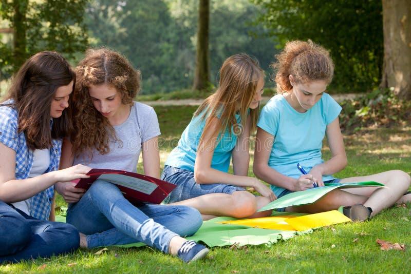 Tonårs- flickor som tillsammans studerar i parkera arkivbild