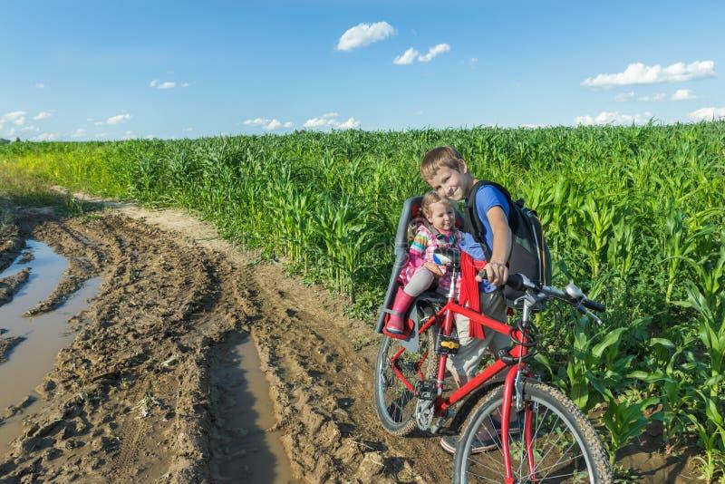 Tonårs- och förskolebarnsyskon som tillsammans cyklar på sommargrusvägen i grönt lantgårdhavrefält arkivfoton