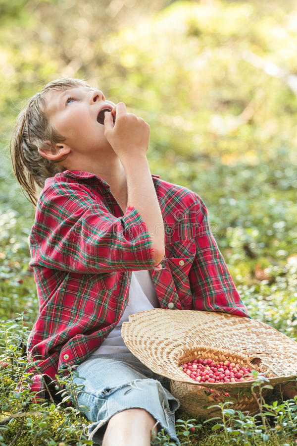 Tonårs- pojke som äter röda wildberries i skog arkivfoton