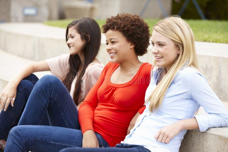 Tonårs- studentflickor som utomhus sitter arkivfoton