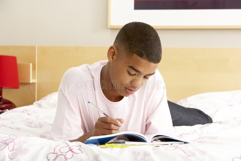 tonårs- writing för sovrumpojkedagbok royaltyfri bild