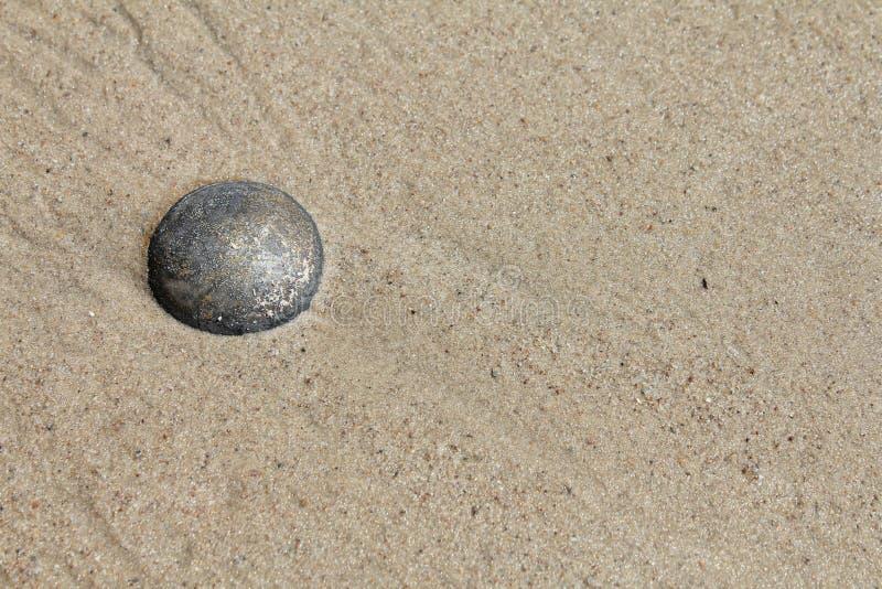 Tonący w piasku zdjęcia royalty free
