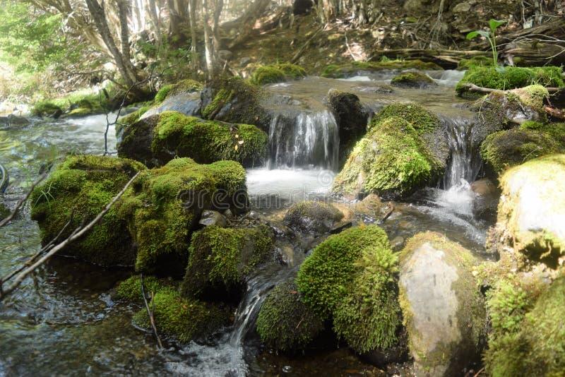 Ton des ruhigen Wassers der Landschaft stockfotos