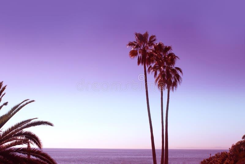 Tonad monokrom ultraviolet gömma i handflatan av den Laguna stranden i Los Angele fotografering för bildbyråer