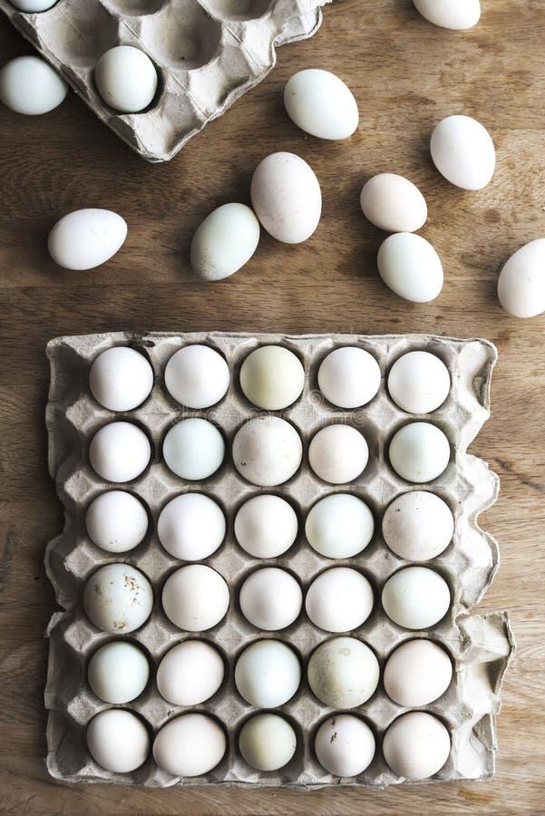 Tonalità differente delle uova fresche dell'azienda agricola di colore in cartone su legno fotografia stock