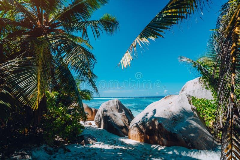 """Tonalità naturale della palma della spiaggia di Anse di argento tropicale famoso di fonte d """", massi del granito, isola di Digue  immagini stock libere da diritti"""