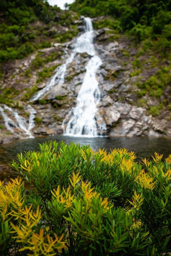 Tonanri瀑布风景,南部海南省,中国的本质 免版税图库摄影