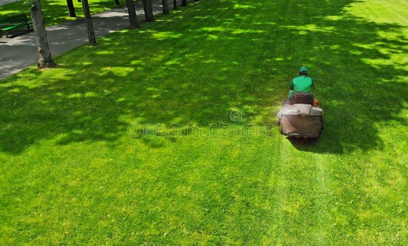 Tondeuse à gazon Le jardinier coupe l'herbe dans une pelouse de parc Coupeur d'herbe image libre de droits