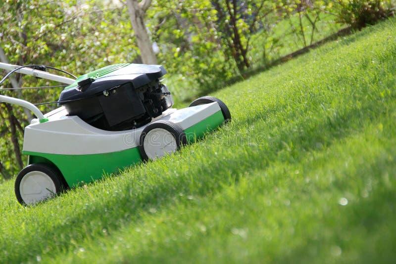 Tondeuse à gazon sur la pelouse images stock